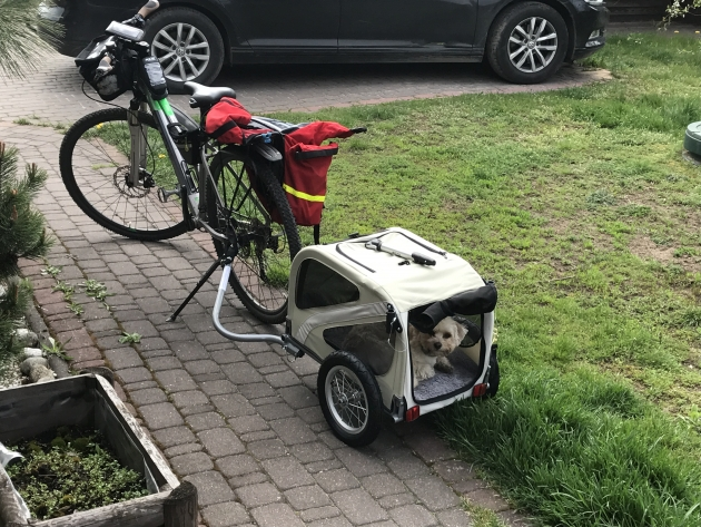 Maryla też by chciała na Camino, rowerowe :)